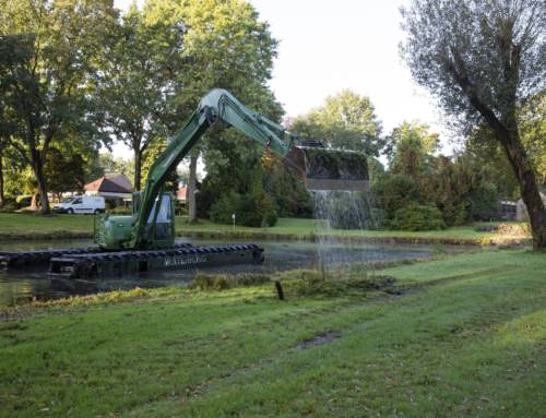 Dredging of a pond and removal of vegetation